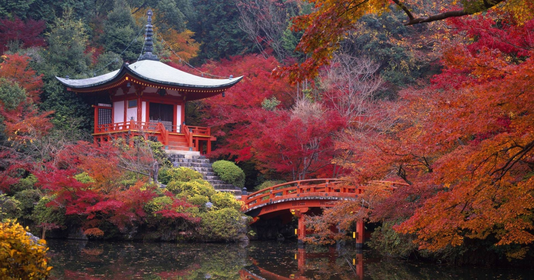 راهنمای سفر به کشور ژاپن