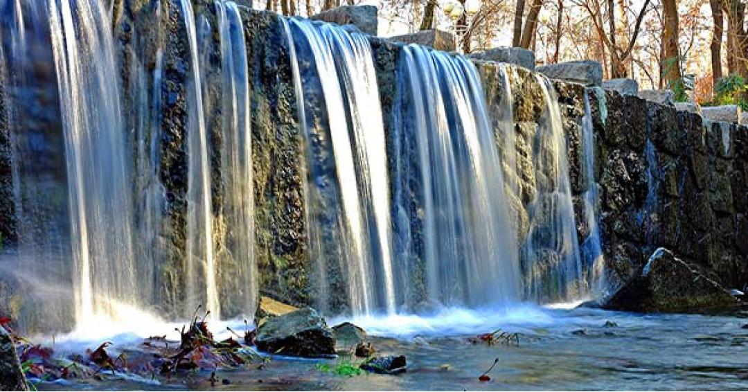 پارک جنگلی وکیل آباد