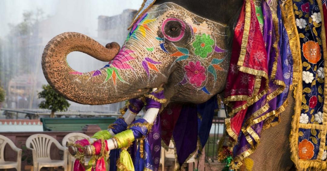 سفر به هند، سفر به صندوقچه اسرار در جنوب آسیا