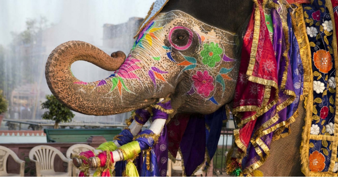 جاذبه های برتر گردشگری هند
