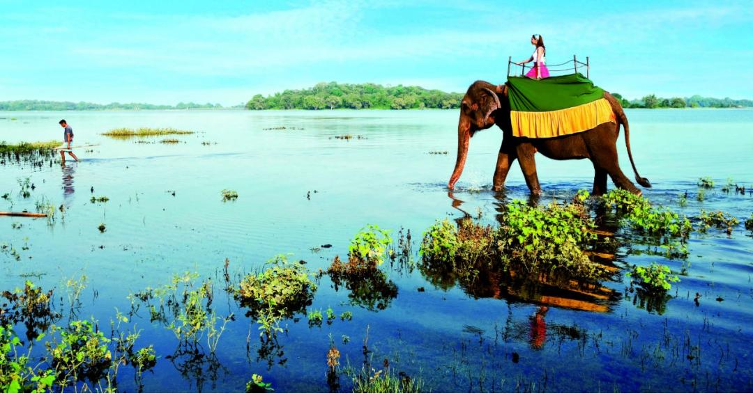 جاذبههای دیدنی گردشگری سریلانکا شرکت هواپیمایی پاژسیر مجری تورهای خارجی اقساطی - قسطی از مشهد